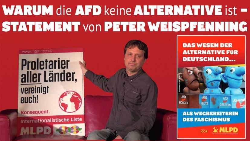 Warum die AfD KEINE Alternative ist