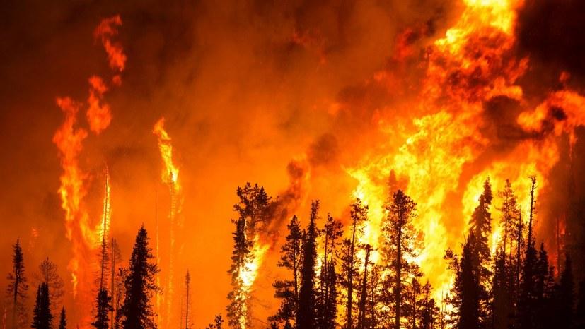 Kriegsübungen und Waldbrände gefährden die Bevölkerung