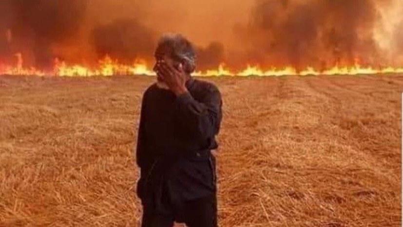 IS und türkische Armee brennen die Ernte nieder